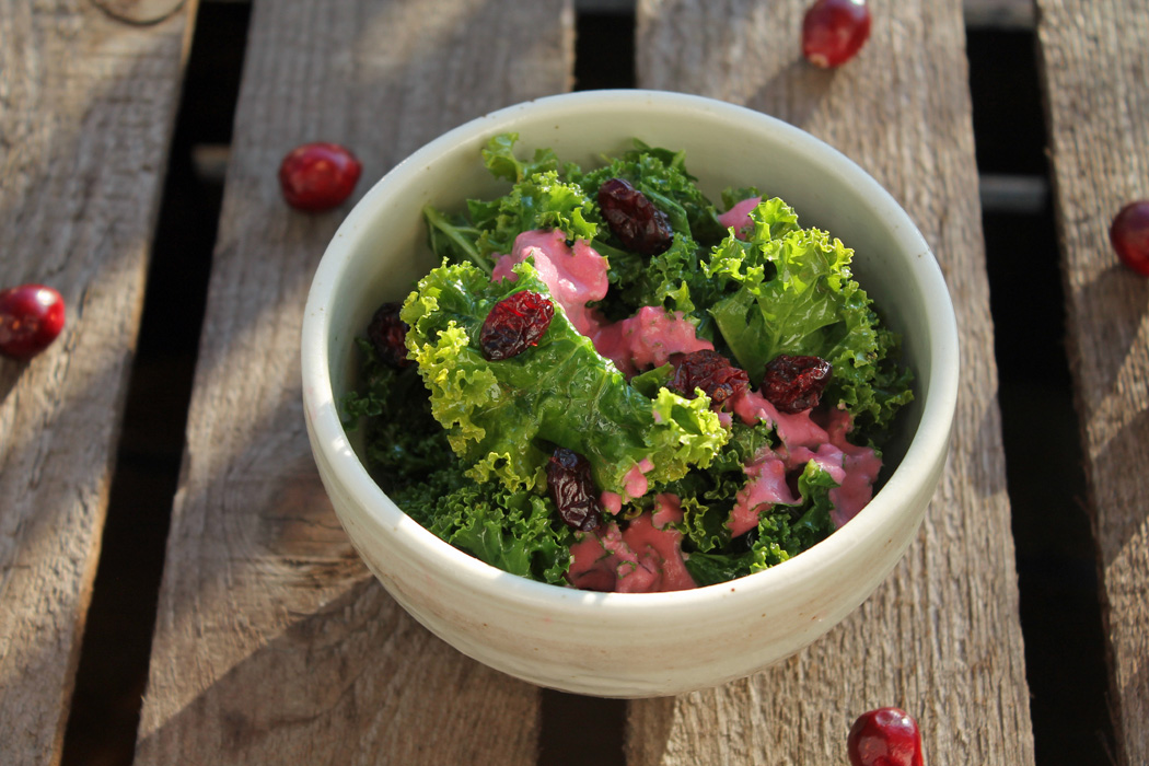 Grünkohl-Salat mit Cranberries