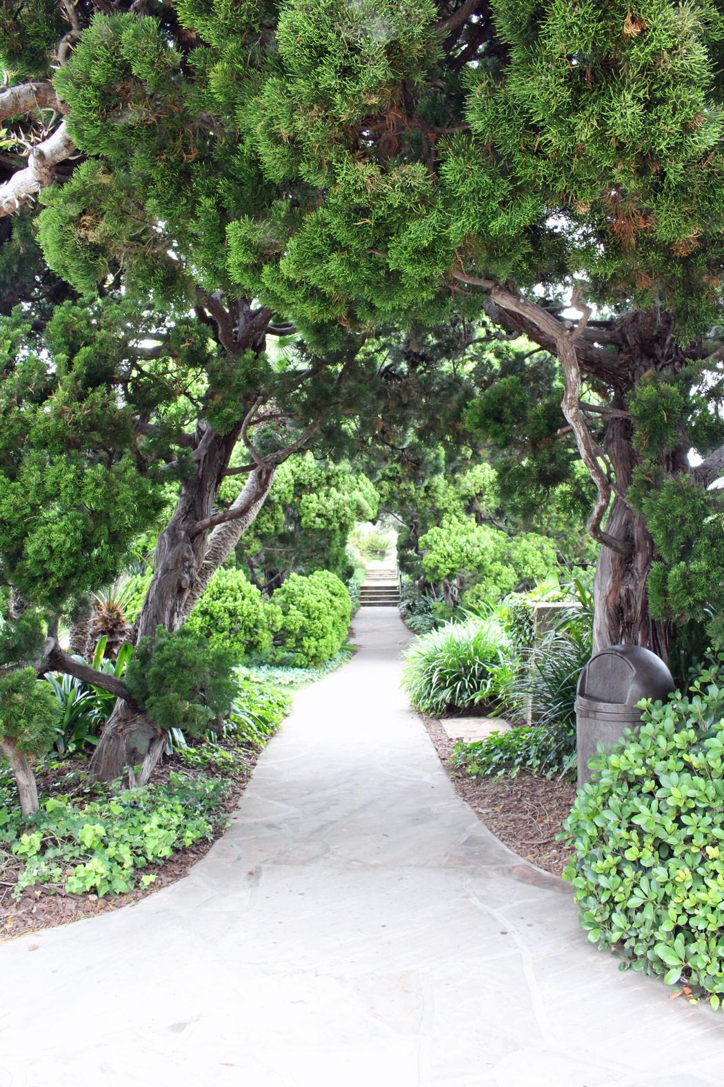besuch im meditationsgarten in encinitas san diego kalifornien projekt gesund leben. Black Bedroom Furniture Sets. Home Design Ideas