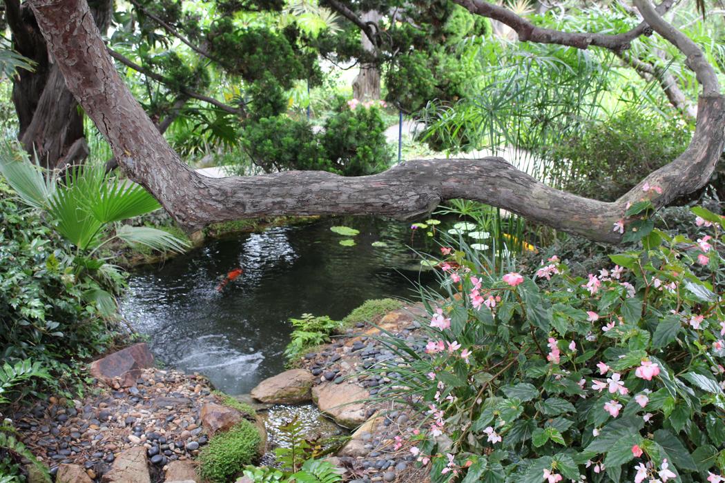 Besuch Im Meditationsgarten In Encinitas San Diego Kalifornien Projekt Gesund Leben