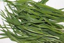 Superfoods: Weizengras