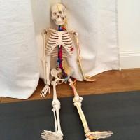 Vinyasa Power Yoga-Ausbildung Teil 5: Adjustments