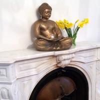 Vinyasa Power Yoga-Ausbildung Teil 7 & 8: Anatomie & Philosophie