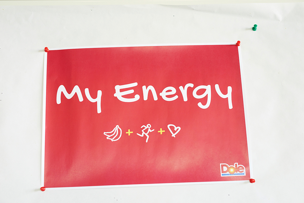 03_Dole Energy-Day 2015