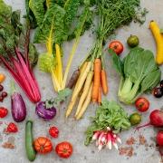 Gemüse richtig zubereiten: Kochen, dünsten, braten...
