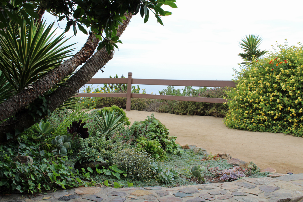 meditation-garden-encinitas05