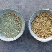 Rezept: Frühlings-Instant-Gemüsebrühe mit Bärlauch (Gemüsebrühpulver)