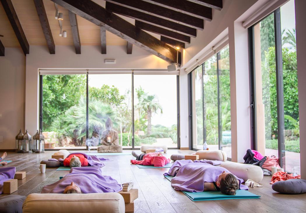 projekt gesund leben retreat x cal reiet holistic retreat 15 ausgebucht