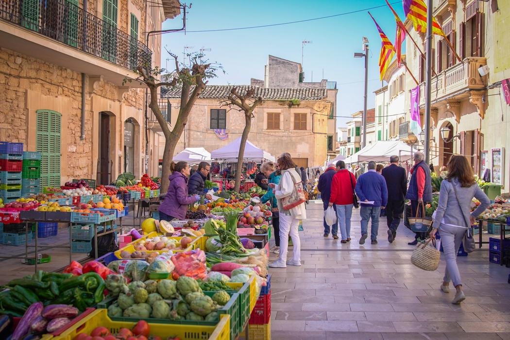 Projekt Gesund leben Retreat Mallorca 2018 022