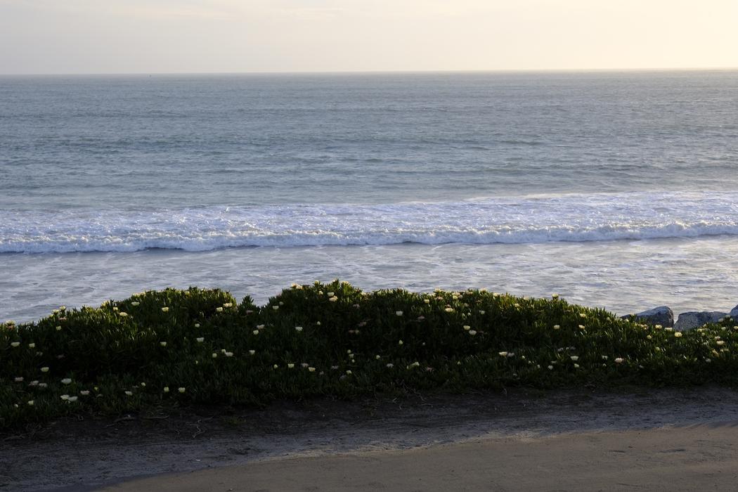 Kalifornien 001 Half Moon Bay