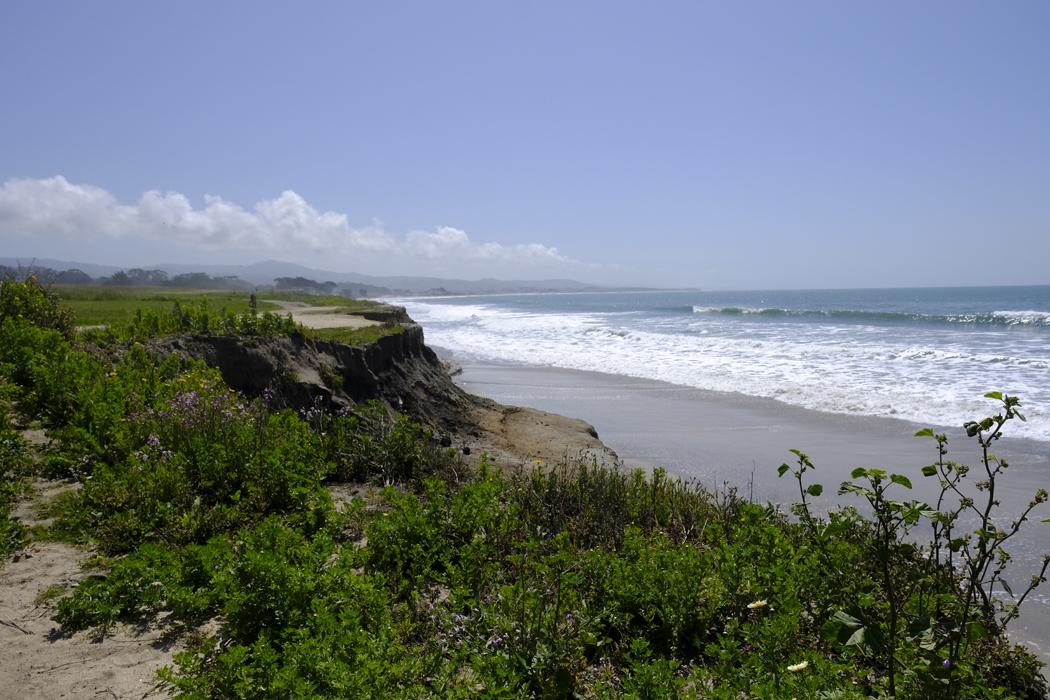 Kalifornien 009 Half Moon Bay