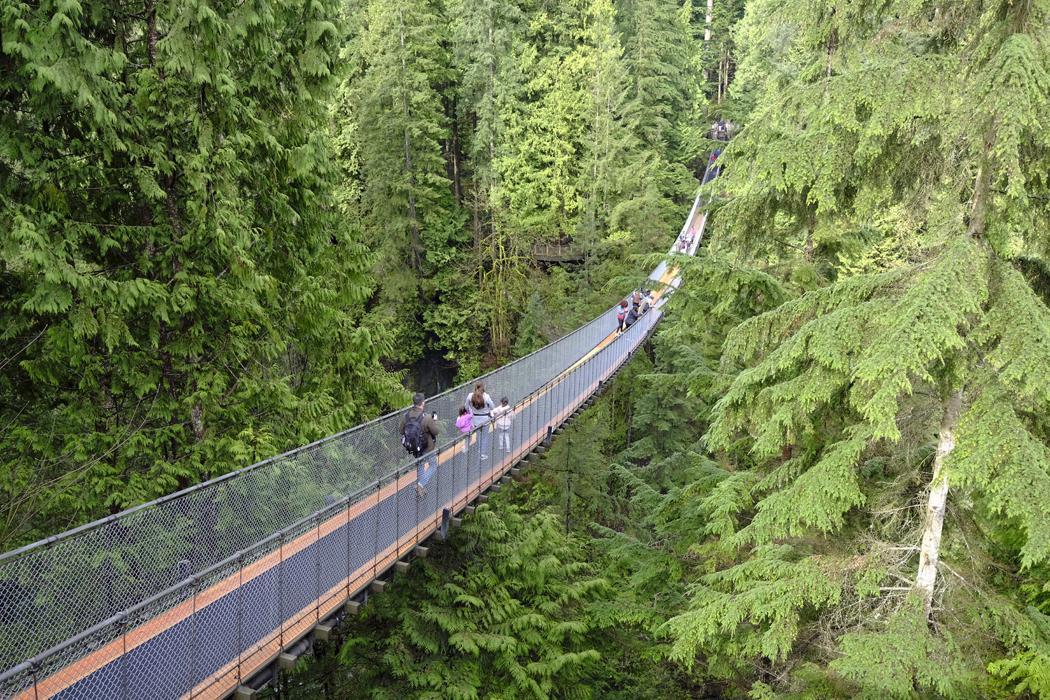 Vancouver Capilano Suspension Bridge03