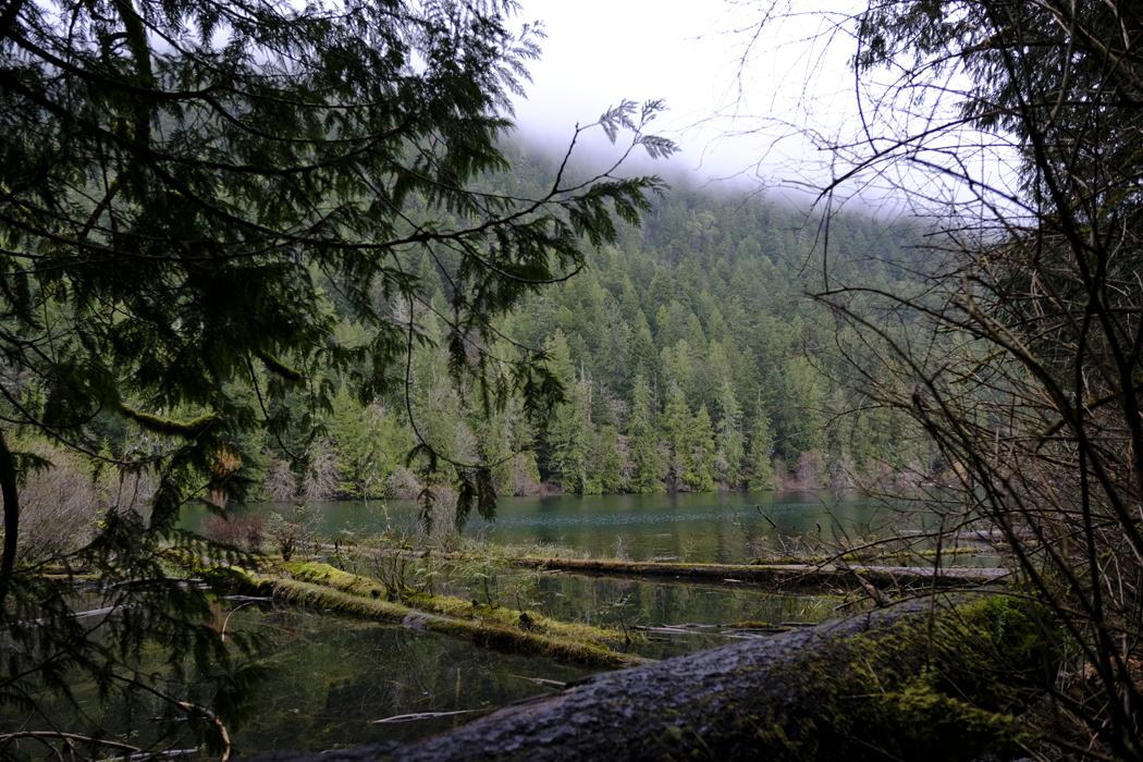 Vancouver Island04